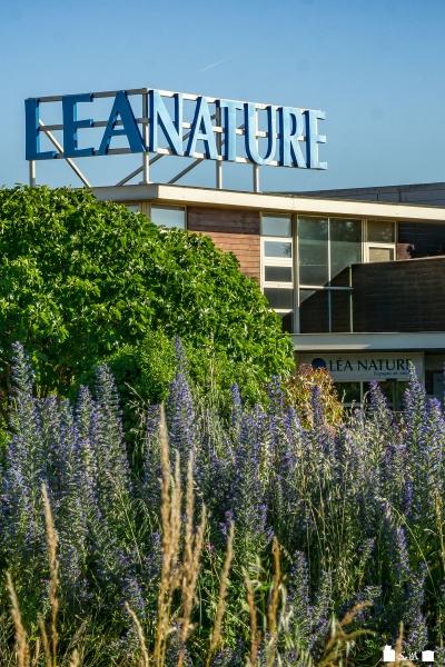 Les Jardins Bio de Léa sont ouverts à la visite - Périgny