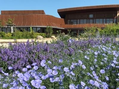 le jardin fleuri du Biopôle de Léa Nature à La Rochelle